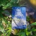 Könyvkritika: Schmal Róza: Nagy folyók haragja I.: A Ladann könyve (2021)