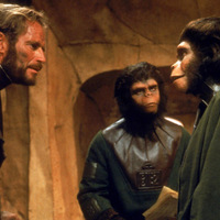 A majmok bolygója / Planet of the Apes (1968)