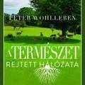 Könyvkritika – Peter Wohlleben: A természet rejtett hálózata (2018)
