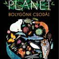 Könyvkritika – Matt Whyman: Our Planet – Bolygónk csodái (2020)