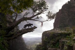 A dzsungel könyve / The Jungle Book (2016)