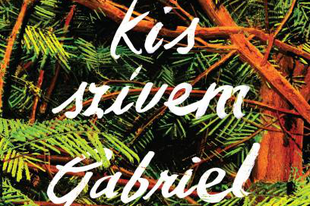 Könyvkritika: Gabriel Tallent: Drága kis szívem (2019)