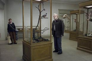 Egy galamb leült egy ágra, hogy tűnődjön a létezésről / En duva satt på en gren och funderade på tillvaron (2014)