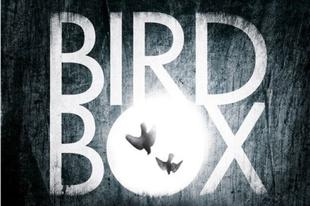 Writers' Block: Bird Box by Eric Heisserer