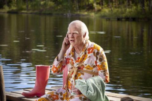 A 100 éves ember, aki kimászott az ablakon és eltűnt / Hundraåringen som klev ut genom fönstret och försvann (2013)