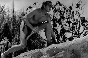 Dzsungelidill: a Tarzan - filmek