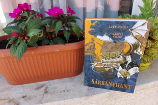 Könyvkritika: Szép Zsolt: Sárkányhant (2021)