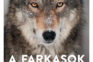 Könyvkritika – Elli H. Radinger: A farkasok bölcsessége (2020)