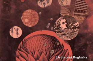 Könyvkritika: Debreceni Boglárka: A belső tó (2018)