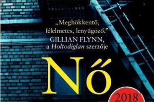 Könyvkritika: A. J. Finn: Nő az ablakban (2018)