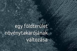 Könyvkritika: Oravecz Imre: Egy földterület növénytakarójának változása (2019)