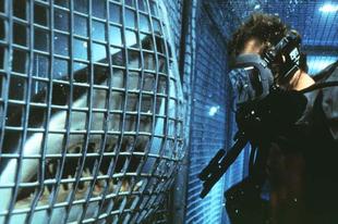 Háborgó mélység / Deep Blue Sea (1999)