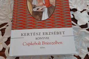 Könyvkritika: Kertész Erzsébet: Csipkebolt Brüsszelben (1974)