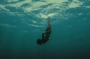 Villámkritikák - Évolution (2015); Tempête (2015)
