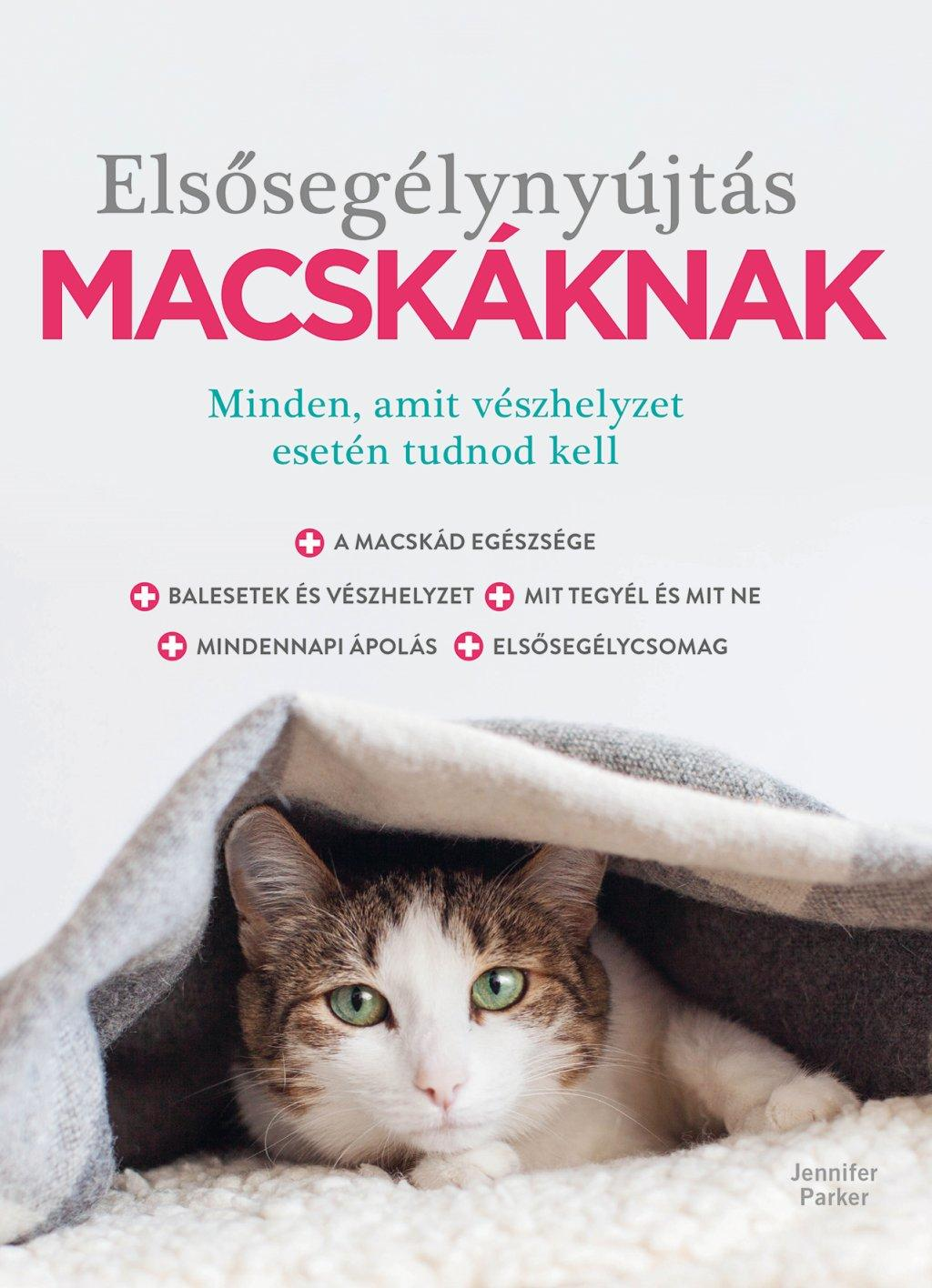 elsosegely_macskaknak.jpg