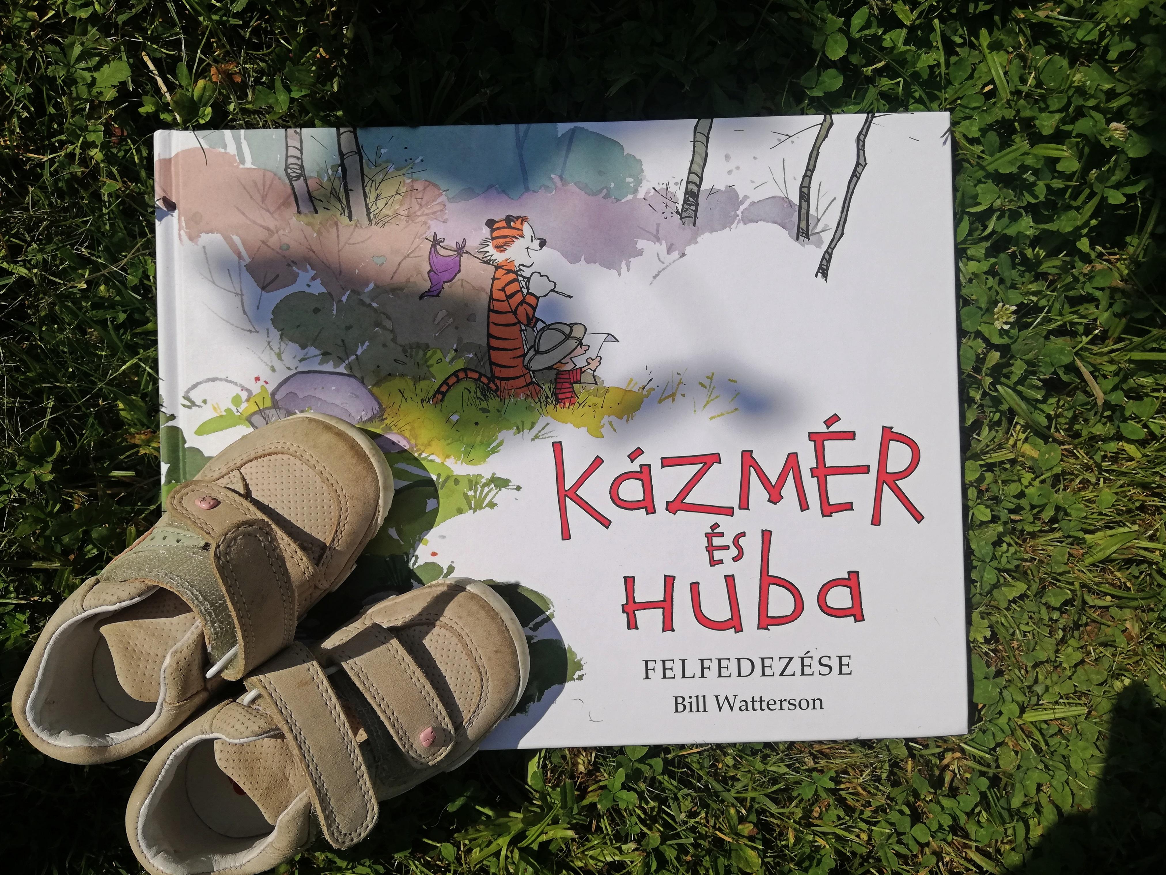 img_kazmer_es_huba_blog.jpg