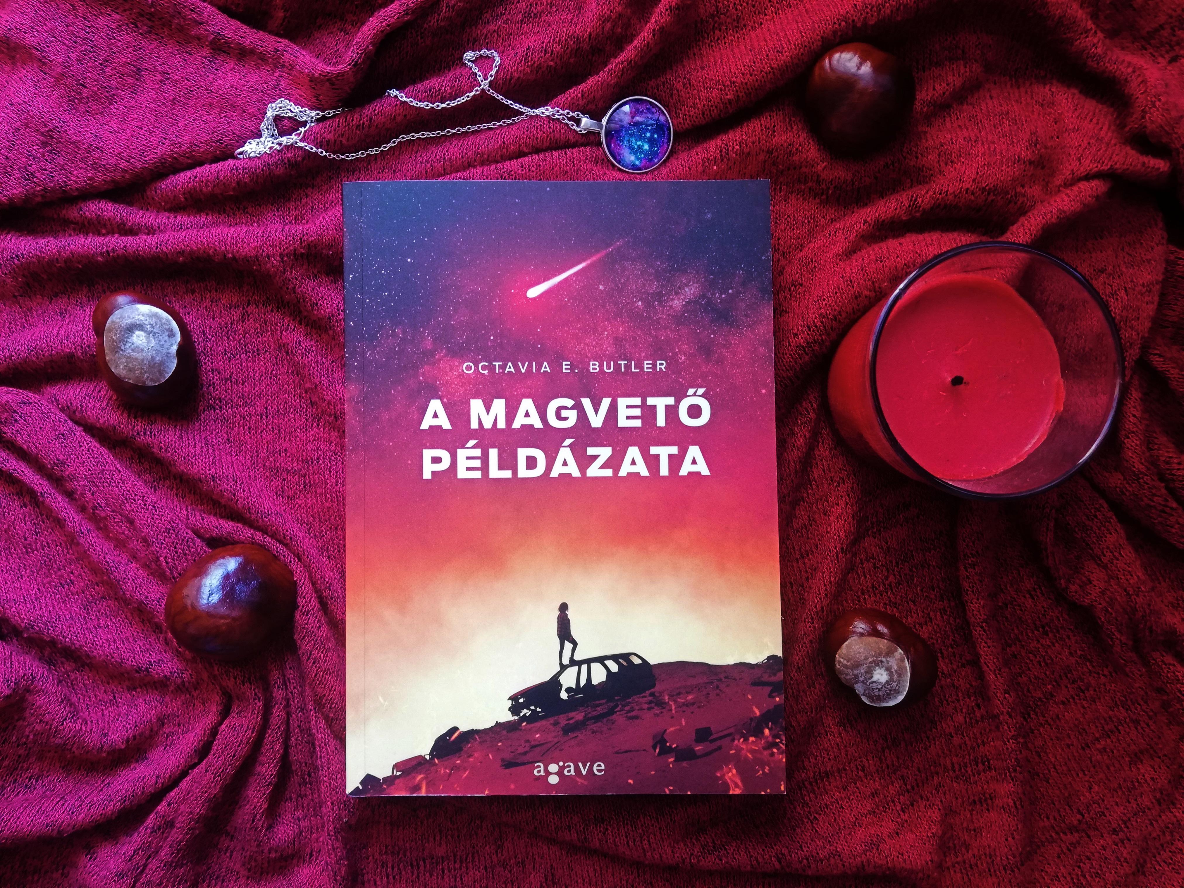 img_a_magveto_peldazata_blog.jpg