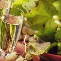Te is a pezsgő szinonimájaként használod a champagne-t? Nem jól teszed.