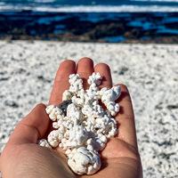 Popcorn-tengerpart: a Kanári-szigetek homokját még véletlenül se együk meg