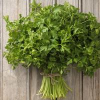 Itt a tavasz, indul a fűszerszezon - Melyik zöldfűszer mire jó?