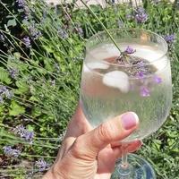 Készíts te is frissítő levendulaszörpöt, vagy használj levendulavirágot keverőnek!