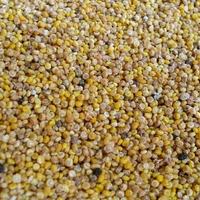 Mi az a quinoa? És mit kell vele csinálni?