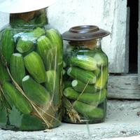 6 dolog, amivel elrontható a kovászos uborka - Puha és szottyos lesz