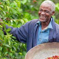 Mit jelent pontosan a fair trade kereskedelem? Ebből a dokumentumfilmből megtudhatod