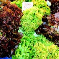 Itt van a nagy salátakalauz: melyik milyen ízű, mi illik hozzá?