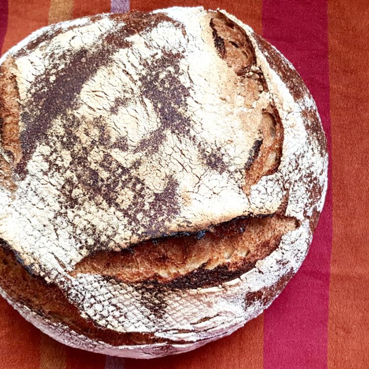 Teljes kiőrlésű házi kenyér - A házi verzió nem száraz fájdalom, mint a bolti