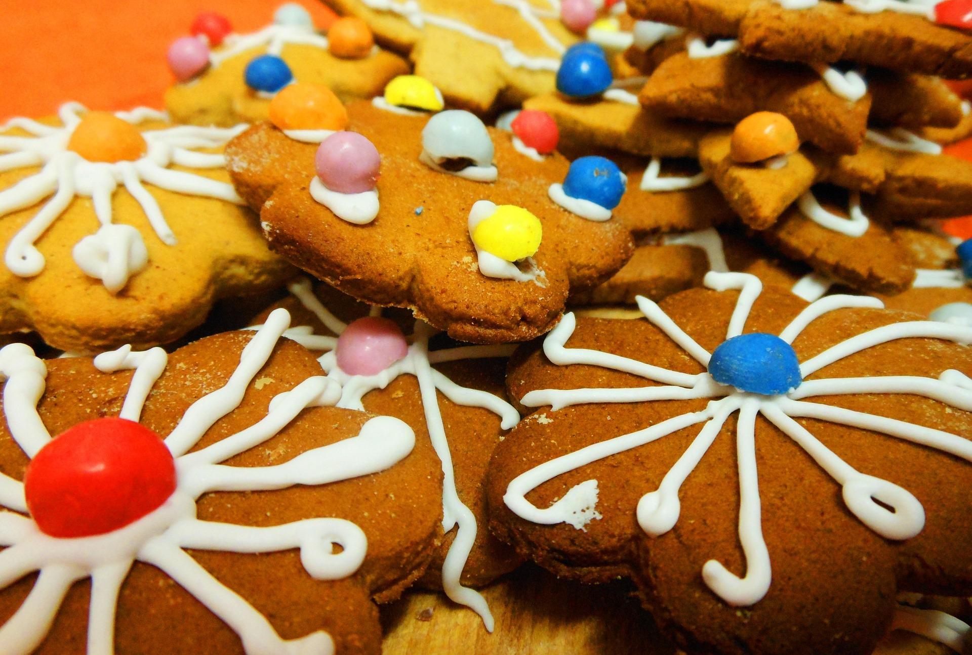 cookie-337058_1920.jpg