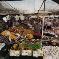 Valóban újra fénykorukat érik a termelői piacok?