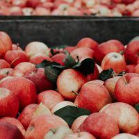 3 végzetes hiba amit elkövethet egy termelő a piacon