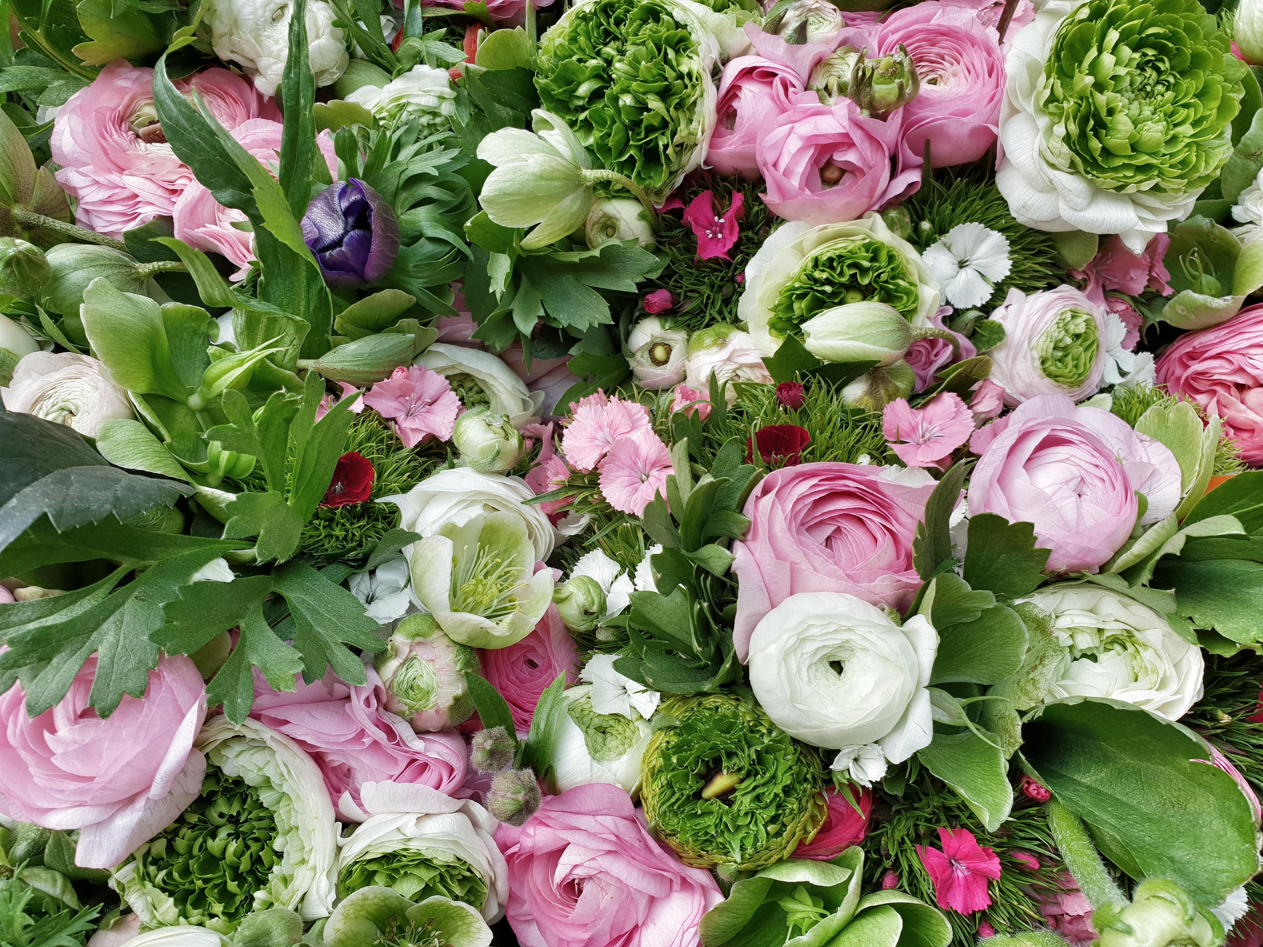 social_agro_flowers.jpg