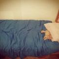 Zseton kiválasztotta, kikkel alszik