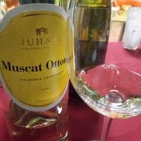 Juhász Muscat Ottonel 2016 - zavar az erőben