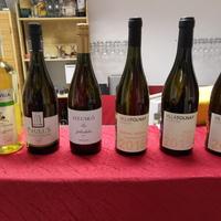 Zöldveltelini fajtakóstoló - sok jó bor, kevés nagyszerű