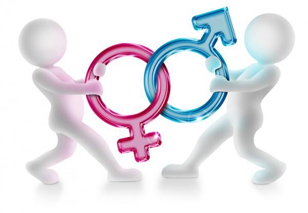 Villámposzt: Genderháború