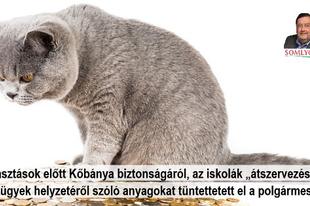 A választás előtt fontos információkat és dokumentumokat tüntettetett el a Fidesz Kőbányán