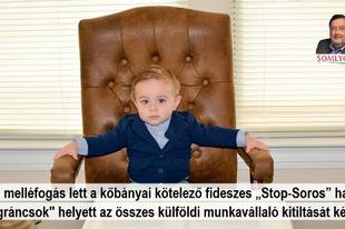 """Óriási melléfogás lett a kőbányai """"Stop-Soros"""" határozat: betámadta a kormányát a helyi fideszes önkormányzat"""
