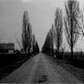Somogyjád - Fő utca (Lenin utca) II.