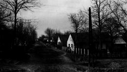 Somogyjád - Virág utca (Latinka utca) az 1950-es években