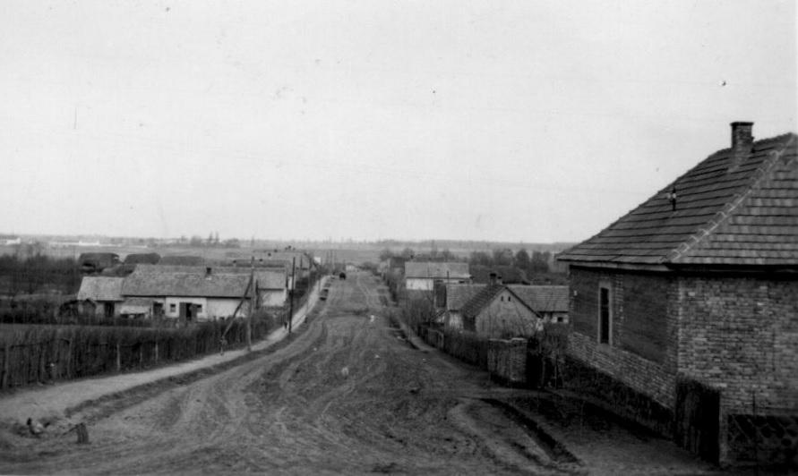 somogyjad_szabadsag_utca_1954-ben.jpg
