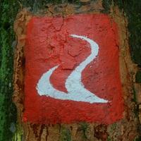 Alpannonia vándorlás - Az Írott-kőtől Borostyánkő váráig