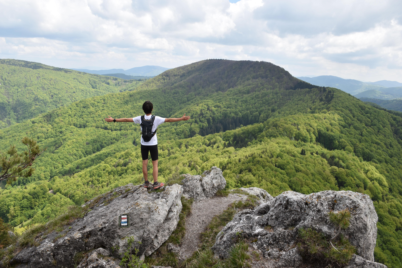 A zöld 50 árnyalata - a Strázsói-hegység mesevilága