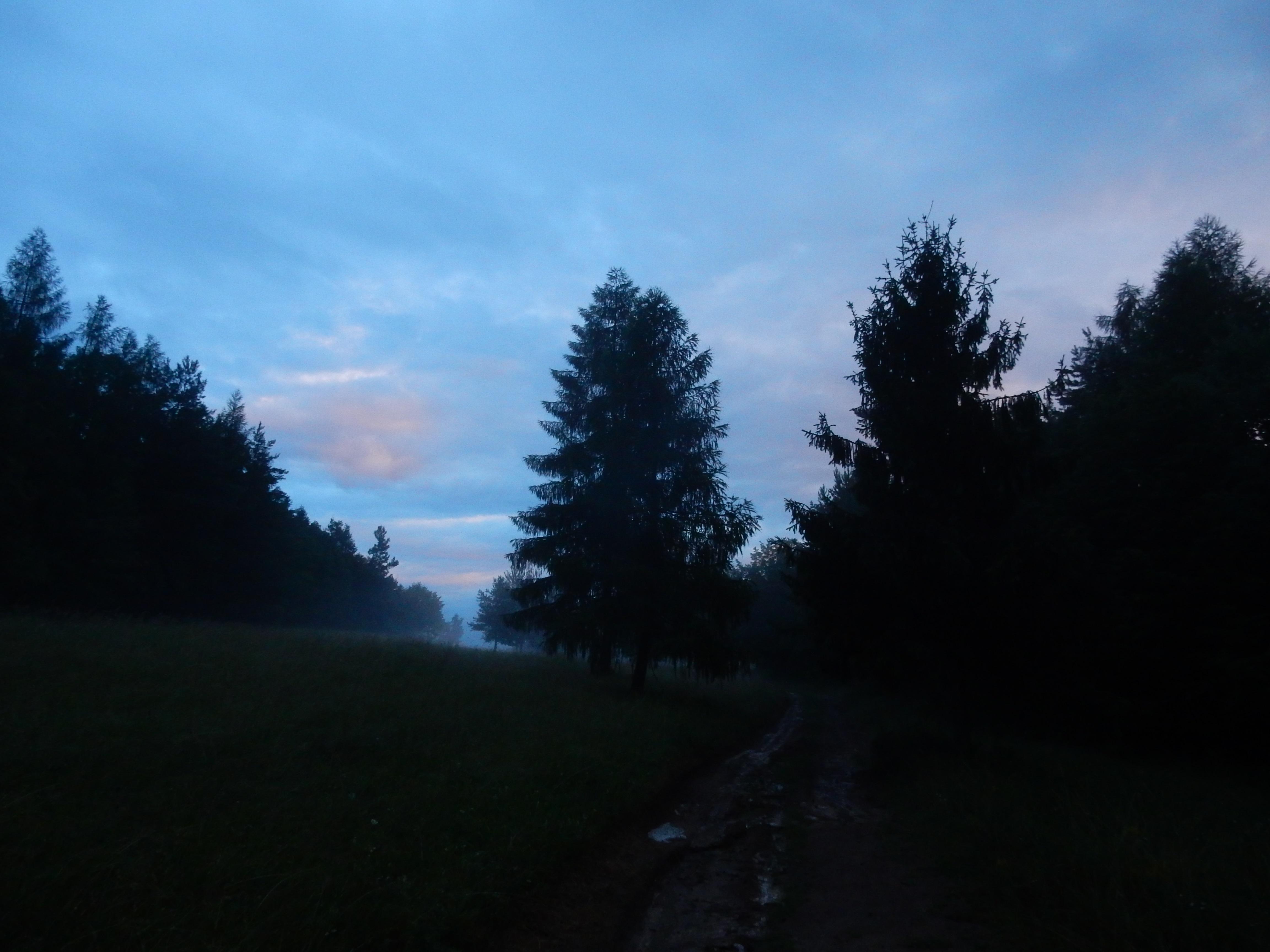 21_4.jpg