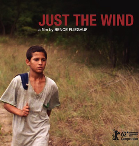 Just-the-wind-a-film-by-Bence-Fliegauf-2012-.jpg