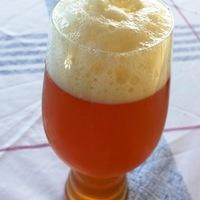 Craft Beer-kristálypoharak a Spiegelau-tól - öntörvényű pohárteszt