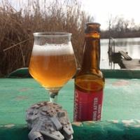 Sörre bor - új Radical Series sörök a Monyo-tól