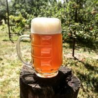 A sörfőzőmesterség